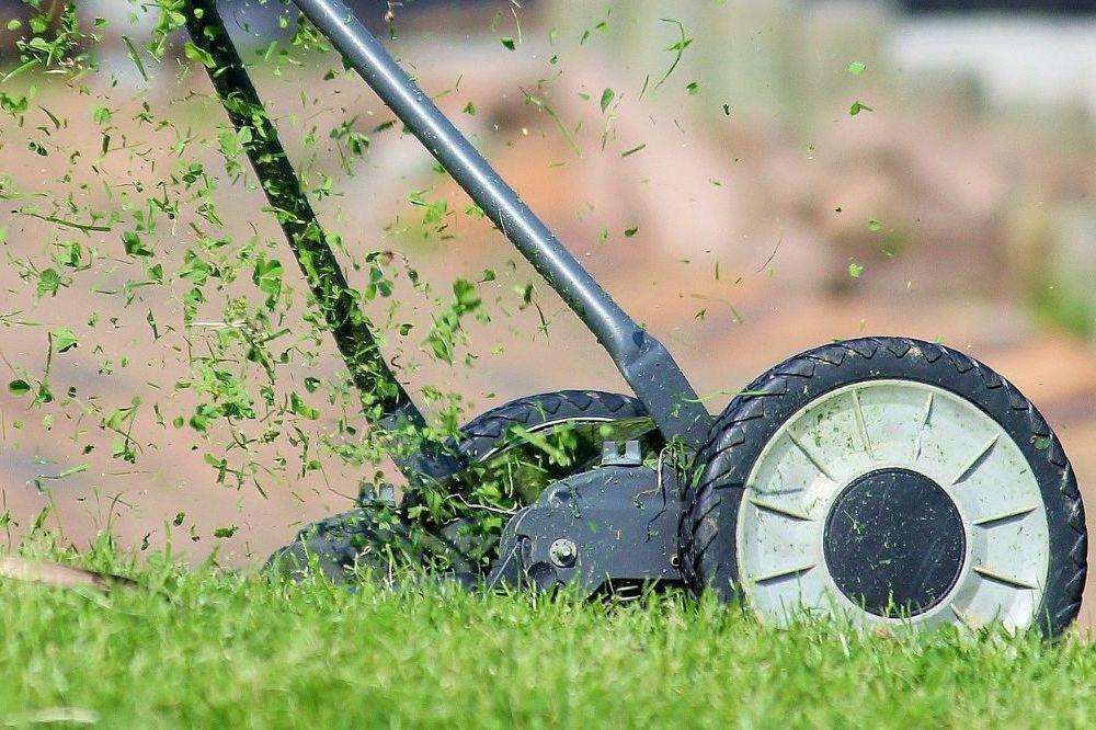 6 tips om het gras gezond te houden