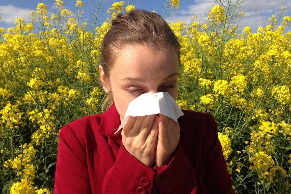 Alles wat je moet weten over een pollenallergie
