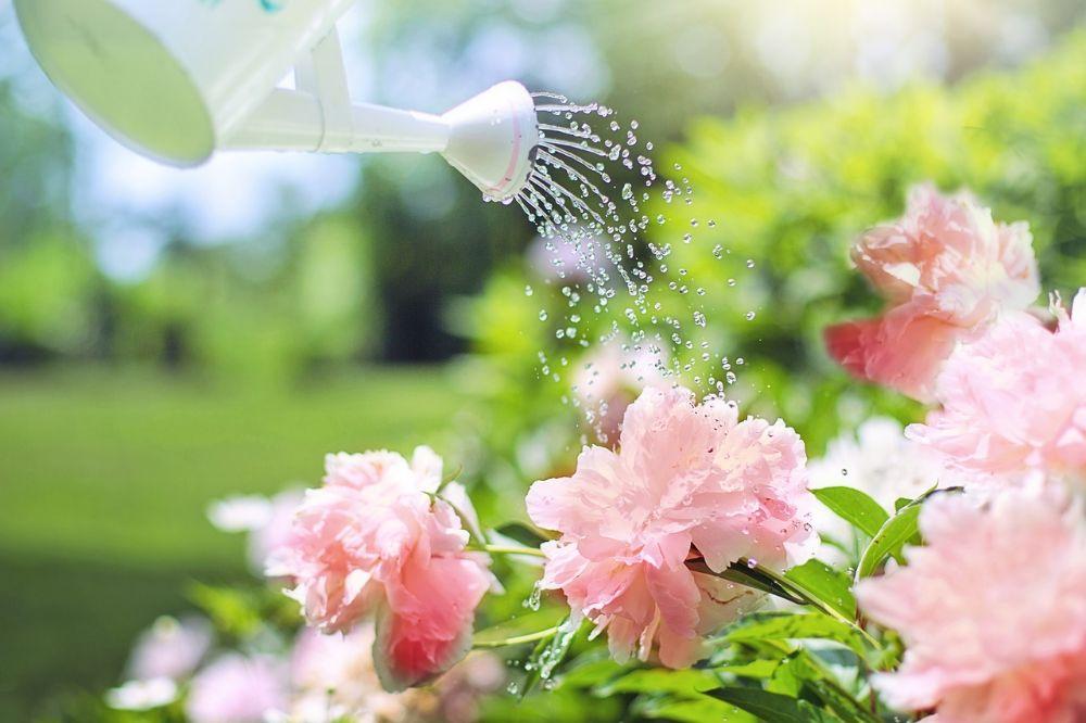 Tuin onderhouden